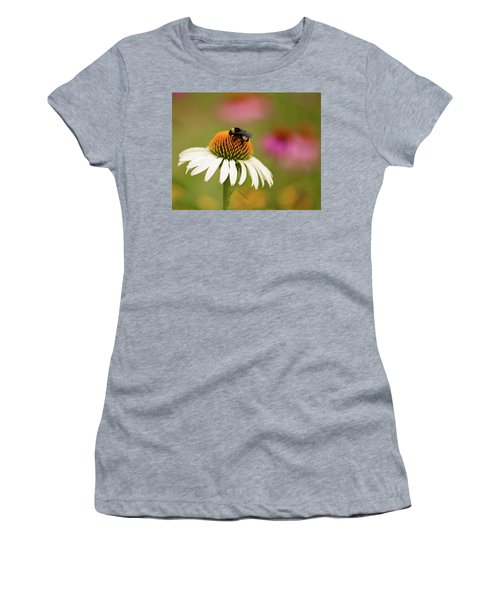 Coneflower And Bee Women's T-Shirt (Athletic Fit)