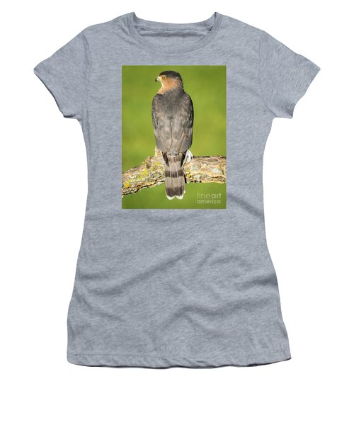 Cooper's Hawk In The Backyard Women's T-Shirt