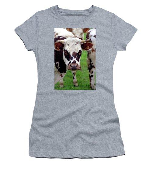 Cow Closeup Women's T-Shirt