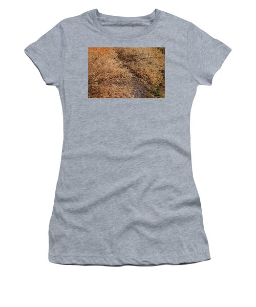 Coyote Brush Women's T-Shirt