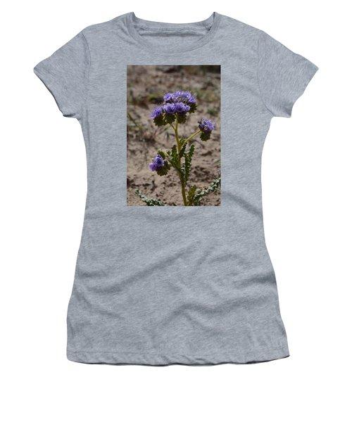 Crenulate Phacelia Flower Women's T-Shirt (Athletic Fit)