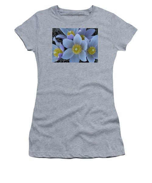Crocus Blossoms Women's T-Shirt