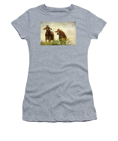 Curious Cows Women's T-Shirt