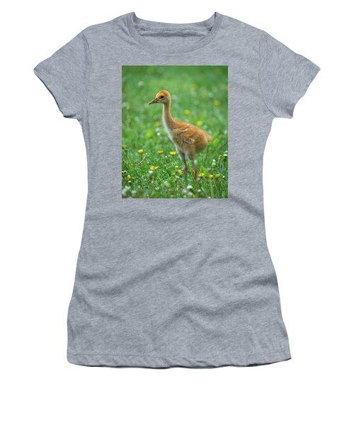Cuteness Women's T-Shirt