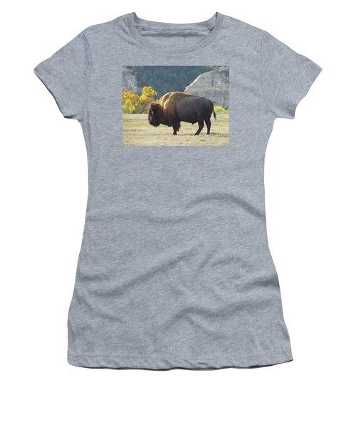 Women's T-Shirt featuring the photograph Dakota Badlands Majesty by Cris Fulton