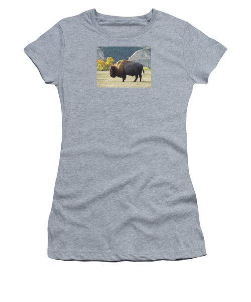 Dakota Badlands Majesty Women's T-Shirt