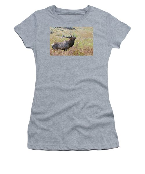 Women's T-Shirt (Athletic Fit) featuring the photograph Dapper Dan by Gary Lengyel