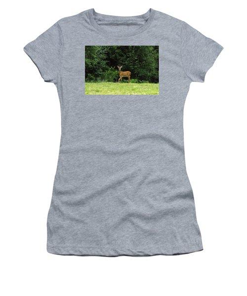 Deer In The Woods Women's T-Shirt
