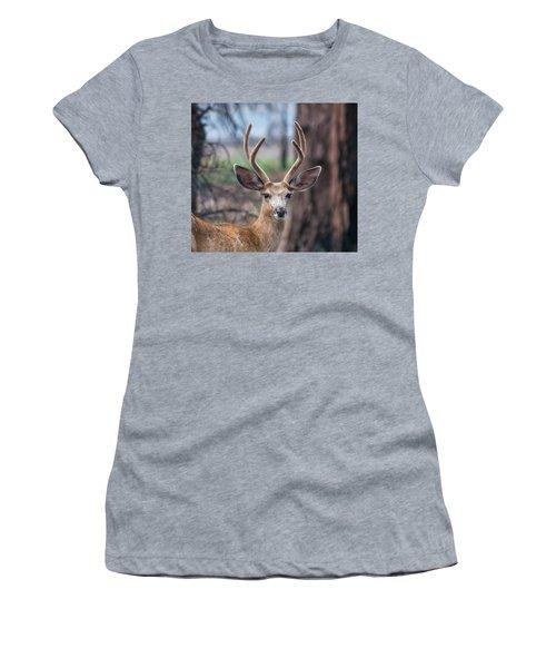 Deer Stare Women's T-Shirt