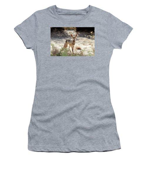 Desert Fox Women's T-Shirt (Junior Cut) by Arik Baltinester