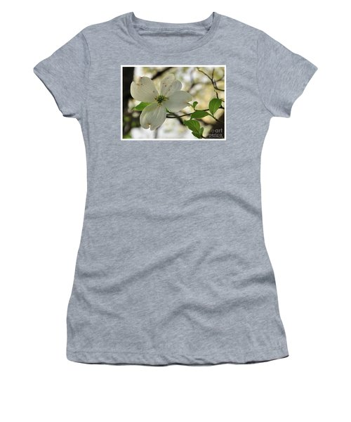 Dogwood Bloom Women's T-Shirt (Athletic Fit)
