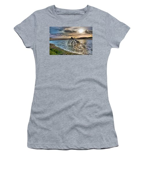 Driftwood In A Tide Pool Outer Banks Ap Women's T-Shirt (Junior Cut) by Dan Carmichael