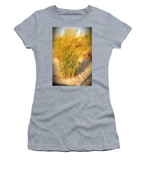 Dune Grass II  - Jersey Shore Women's T-Shirt