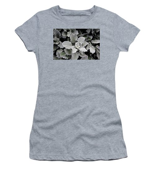 Dusty Miller Women's T-Shirt