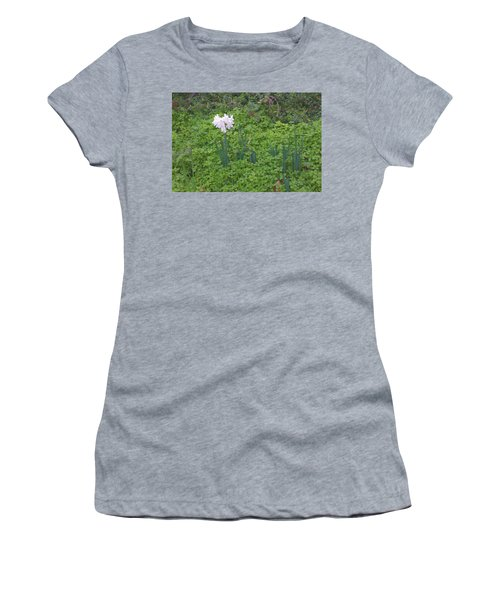 Early Spring Garden Flowers Women's T-Shirt (Athletic Fit)