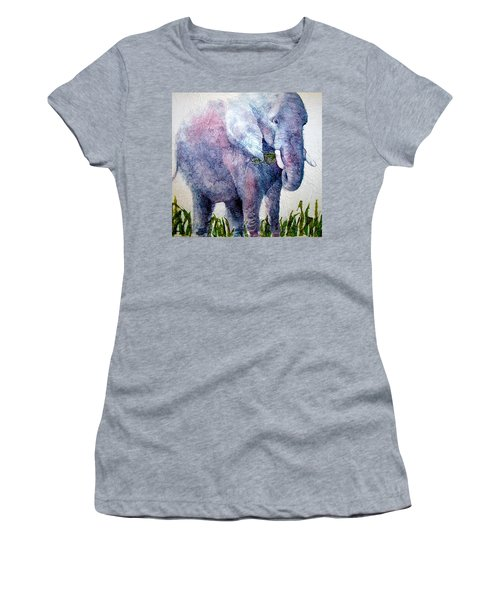 Elephant Sanctuary Women's T-Shirt