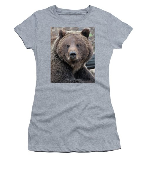 Face Of The Grizzly Women's T-Shirt