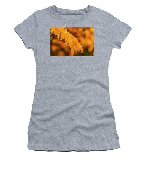 Falls At Central Cascade Women's T-Shirt