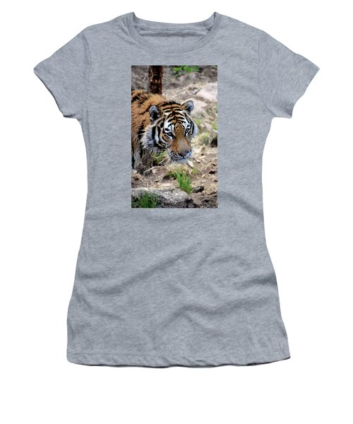 Feline Focus Women's T-Shirt
