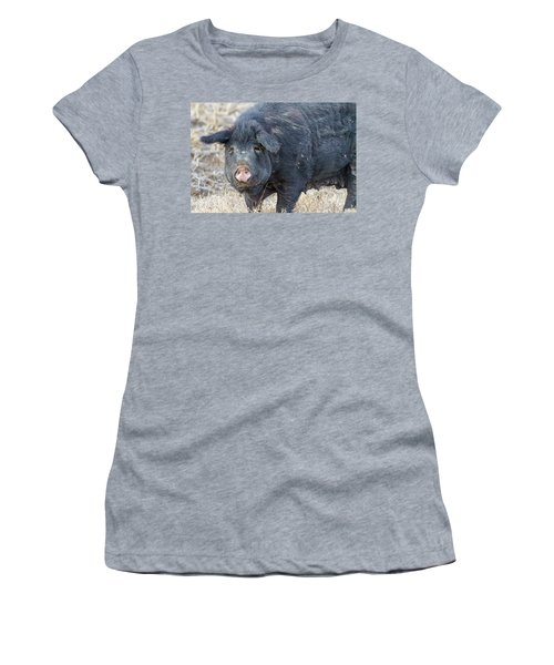Women's T-Shirt (Junior Cut) featuring the photograph Female Hog by James BO Insogna