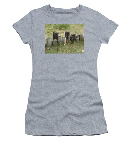 Fence Post All In A Row Women's T-Shirt (Junior Cut) by Erick Schmidt