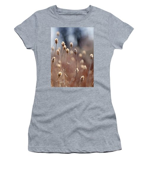 Field Of Dried Flowers In Earth Tones Women's T-Shirt (Athletic Fit)