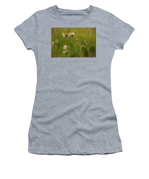 Field Of Flowers 2 Women's T-Shirt