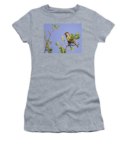 Finch Women's T-Shirt