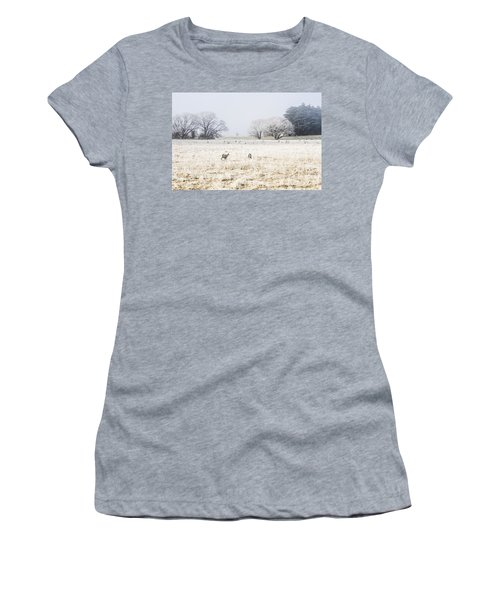Fingal Winter Farmyard Women's T-Shirt