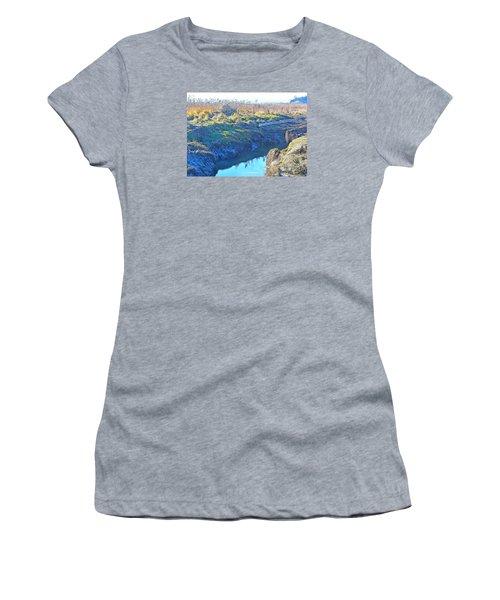Fir Island November Women's T-Shirt (Junior Cut) by Tobeimean Peter