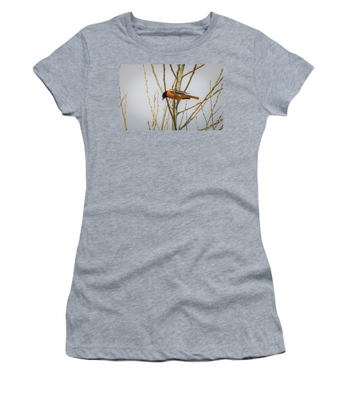 Women's T-Shirt (Athletic Fit) featuring the photograph First Baltimore Oriole Of The Year  by Ricky L Jones