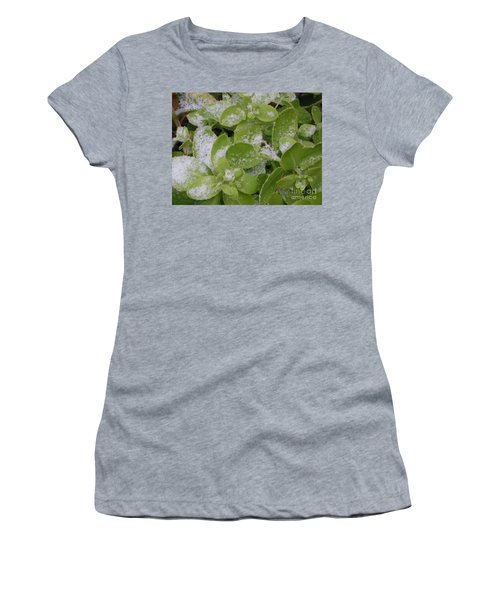Women's T-Shirt featuring the photograph First Dusting Of Snow Plant by Rockin Docks Deluxephotos
