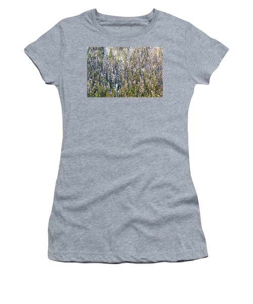First Snow On Trees Women's T-Shirt