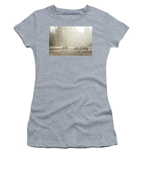 Five Horses In The Mist Women's T-Shirt (Athletic Fit)