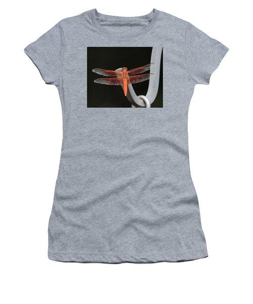 Flame Skimmer Women's T-Shirt