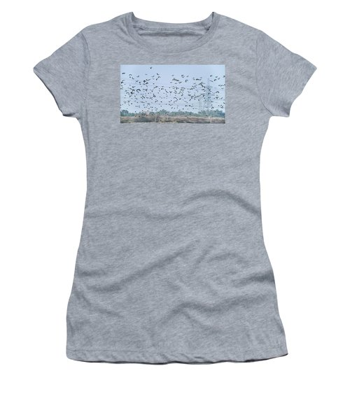Flock Of Beautiful Migratory Lapwing Birds In Clear Winter Sky Women's T-Shirt (Athletic Fit)