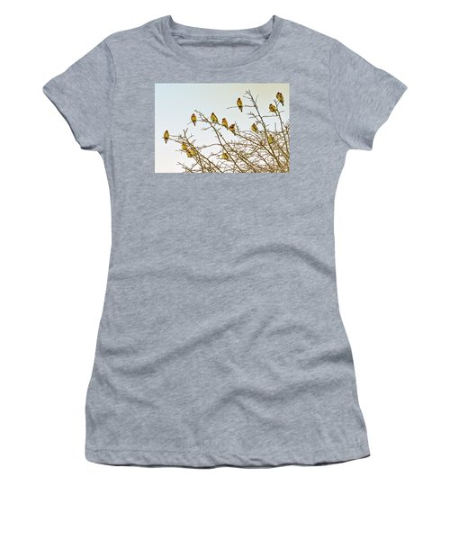 Flock Of Cedar Waxwings  Women's T-Shirt (Athletic Fit)
