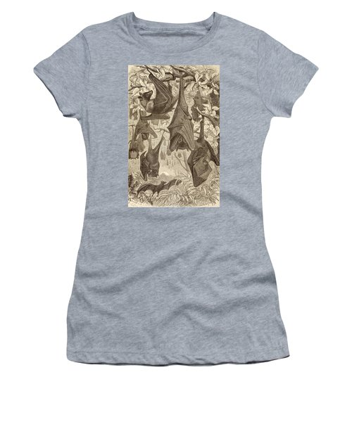 Flying Foxes Also Known As Fruit Bats Women's T-Shirt