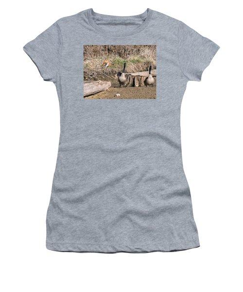 Women's T-Shirt (Junior Cut) featuring the photograph Fox Watch by Edward Peterson