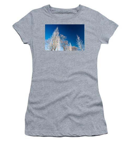 Frost Covered Trees Women's T-Shirt