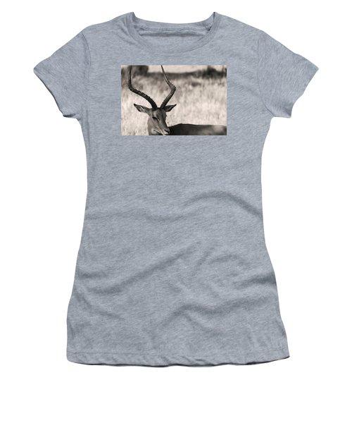 Gazella Women's T-Shirt