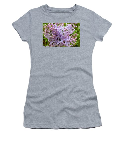 Gentle Purples Women's T-Shirt