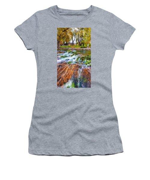 Giant Springs 2 Women's T-Shirt (Junior Cut) by Susan Kinney