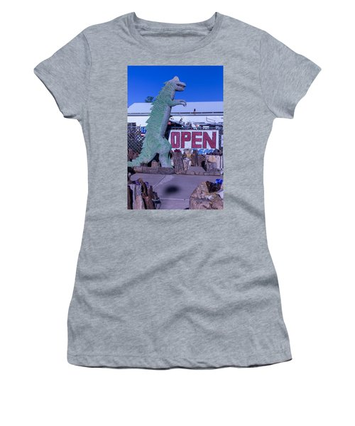 Gift Store Dinosaur  Women's T-Shirt
