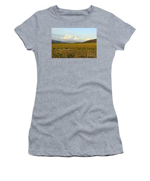 Glowing Meadow Women's T-Shirt