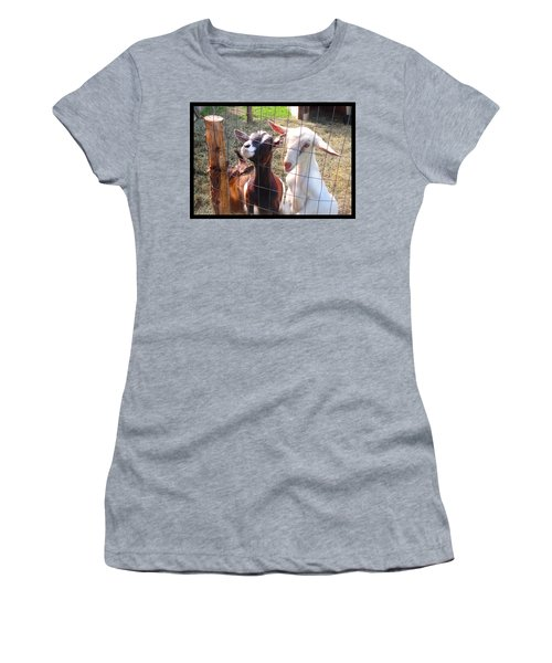 Women's T-Shirt (Junior Cut) featuring the photograph Goats by Felipe Adan Lerma