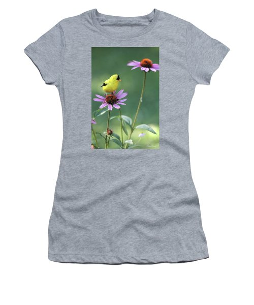Goldfinch On A Coneflower Women's T-Shirt (Athletic Fit)