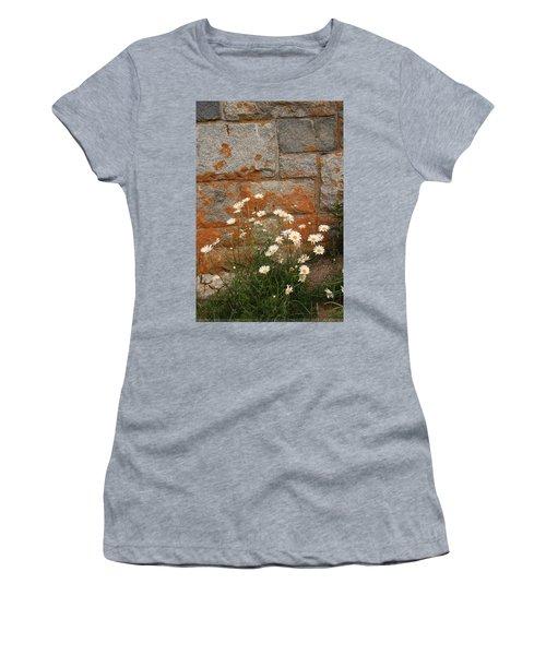 Granite Daisies Women's T-Shirt