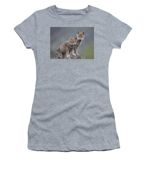 Women's T-Shirt featuring the photograph Gray Wolf Canis Lupus Pups In Light by Tim Fitzharris