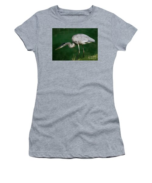 Great Blue Heron Series Women's T-Shirt (Athletic Fit)